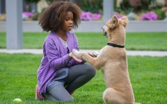 """""""Annie"""" reinvents classic story of love and family"""