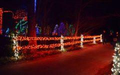 Meadowlark Winter Walk of Lights: A Photogallery