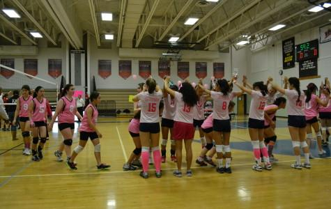 Volleyball team dedicates game to cause