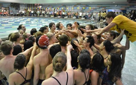 TJ Swim and Dive dominates against FCPS rivals