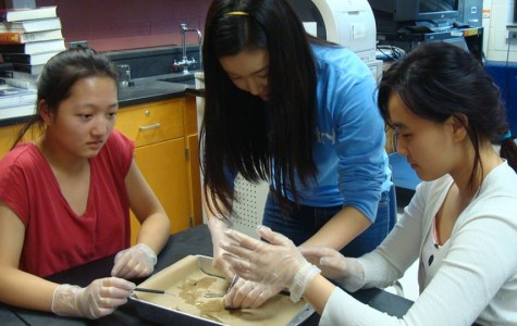 Juniors Jennifer Fang, Janie Choi and Joo Kang learn how to dissect a cow's eye. Photo by Esther Kim.