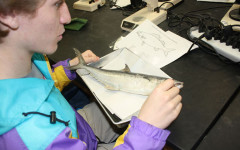 Students examine fish in marine biology class