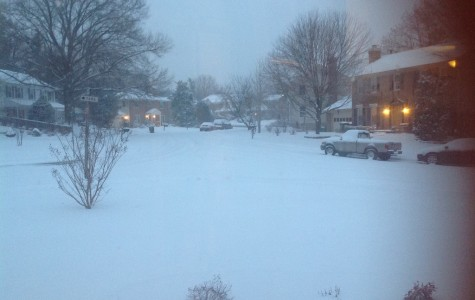 Nearly 4 inches of snow piled up today in Vienna, Virginia around 5 p.m.