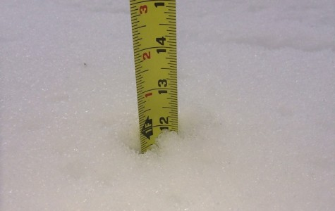 While not common, Northern Virginia often receives large amounts of snow.