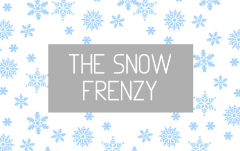 The Snow Frenzy