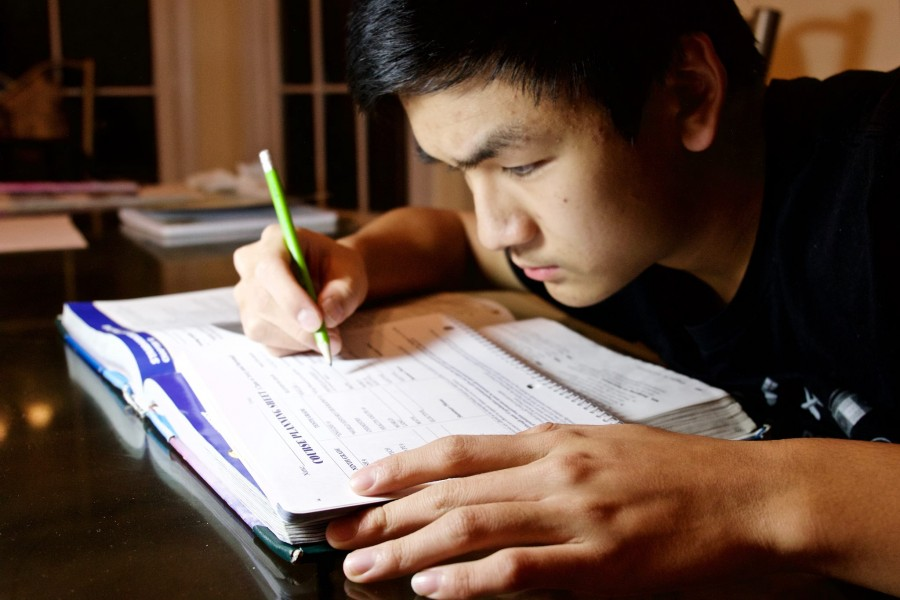 Sophomore Frank Ding uses his school agenda to plan his junior courses. Photo courtesy of Frank Ding