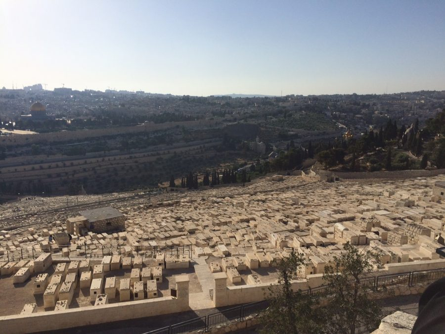 A+view+of+just+a+fraction+of++Mount+of+Olives%2C+located+east+of+the+Old+City+of+Jerusalem