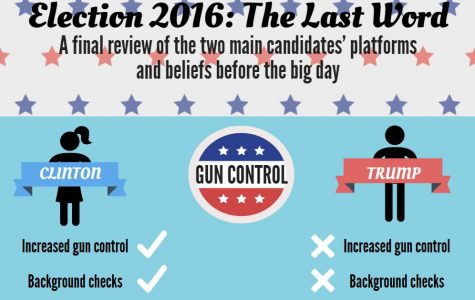 Election 2016: the last word on candidates' platforms