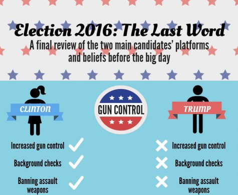 Election 2016: the last word on candidates