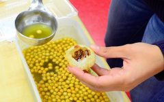 Cultural Food Taste Test: Pani Puri Assembly