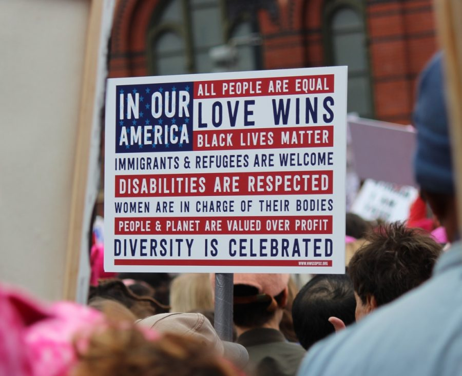This+sign+shows+the+spirit+of+the+March.+Many+people+who+believe+in+many+different+things+came+together+to+protest+and+achieve+the+goal+of+affecting+change.