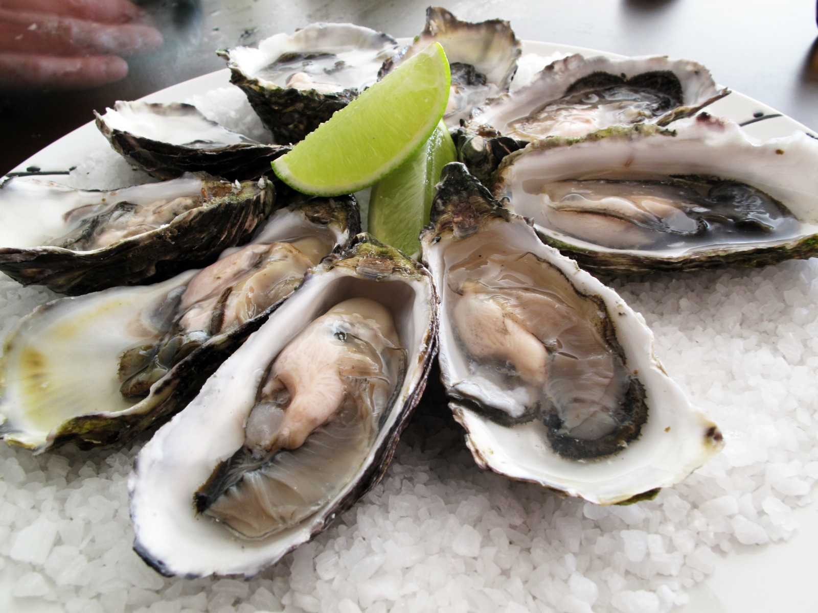 A platter of oysters topped with a lime for flavoring.