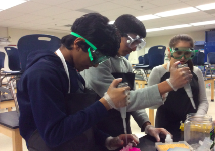 Biology students Koushik Thiyagarajan, Chris Jose, and Gabby Heller, utilize the micropipettes to remove nucleic acid from the membrane, which is then collected from the bottom of the column. This step is among many in the procedure of DNA extraction.