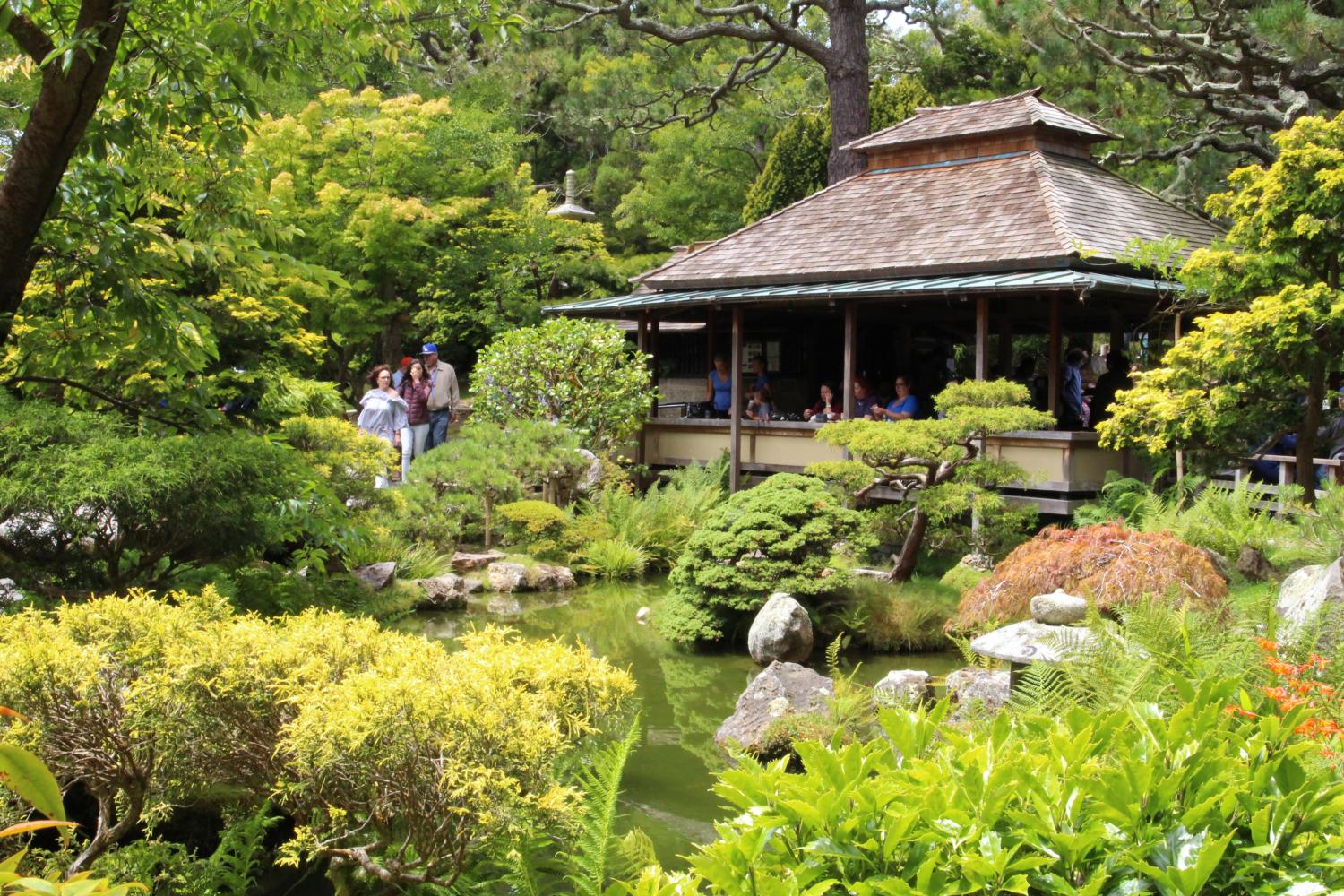 The Golden Gate Park also features the Japanese Tea Garden, in which visitors can experience the Japanese culture through tea, sceneries, and structures.