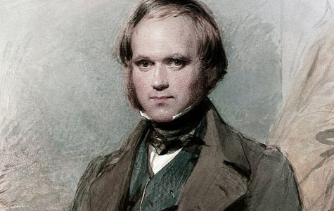 Photo courtesy of National Geographic; a young Charles Darwin.