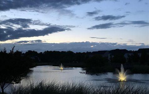 A stroll through nature: Exploring Kirkpatrick Farms pond