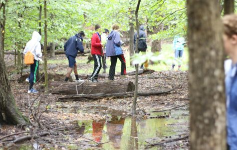 Salamanders, Composting, and Oysters – How TJ Students are Saving the Environment