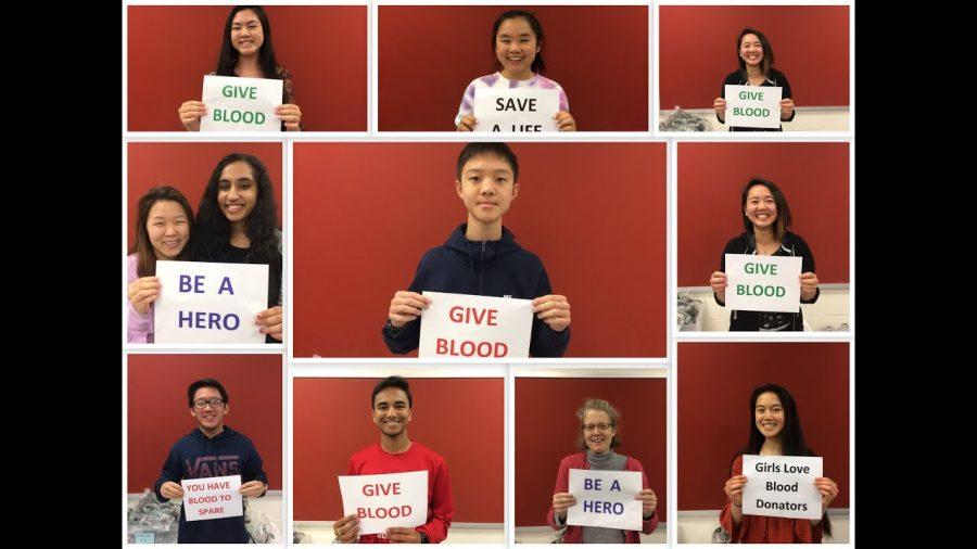 Why+Donate+Blood+at+TJ%3F