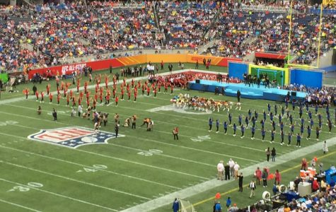 Players at the Pro Bowl line up on the field before the game