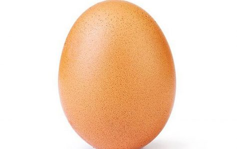 An Egg becomes the most liked post on Instagram
