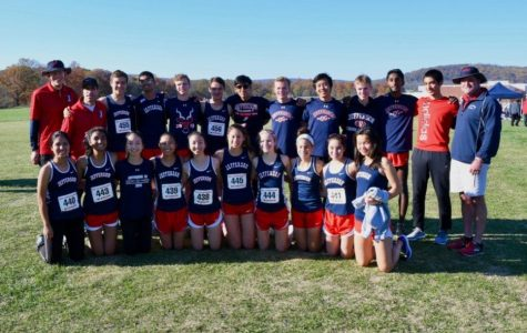 Cross country team qualifies for states