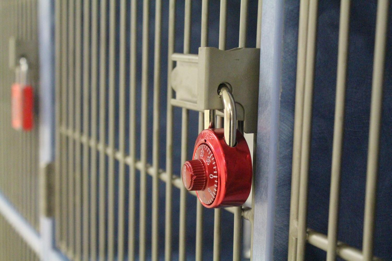 Locks secure many of the cubbies at Jefferson, including this one in the audlob.