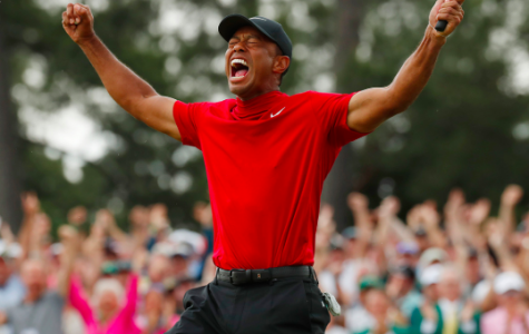 Top 9 of 2019: Sports Moments