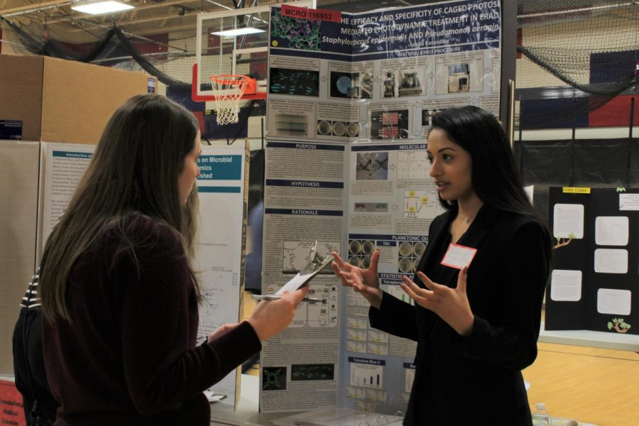 Science Fair: Photo Gallery