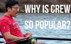 TJ Crew: Why Is It so Popular?