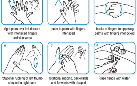 An infographic detailing how to properly wash your hands.