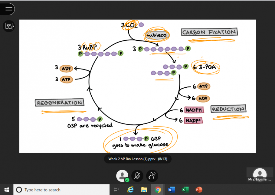 Here, an AP Biology class reviews the Krebs cycle over the platform Blackboard Collaborate Ultra.