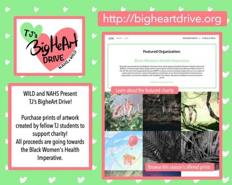 Student organizations collaborate for BigHeArt Drive