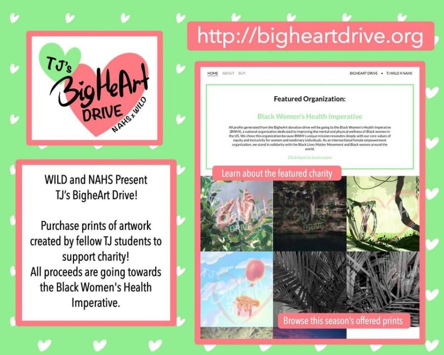 Student+organizations+collaborate+for+BigHeArt+Drive