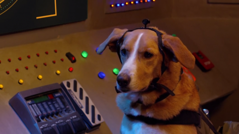 "Dog actor Good-Beasley in ""Agent Toby Barks"". Image Courtesy of IMDb."