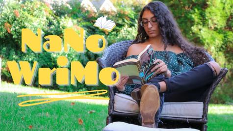 NaNoWriMo: A Novelist's Month