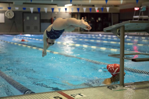 Senior Natalie Martin dives into the pool during the 400-meter freestyle relay.