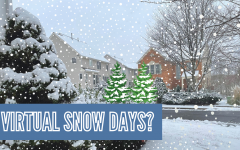 Virtual Snow Days?
