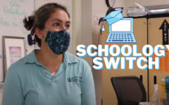 The Schoology Switch